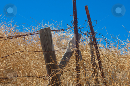 Rusty barbed wire and rotting wooden fence posts in a dry summer stock photo, A horizontal shot of rusty barbed wire and rotting wooden fence posts in a dry summer field in southern California. by Marc Wolpe