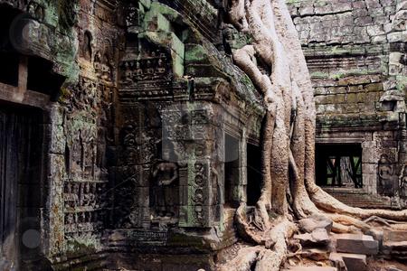 Angkor stock photo, cambodia angkor  wat by Charles Taylor