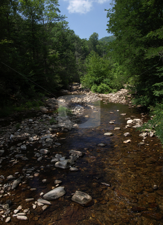 Rocky creek stock photo, Mountain Creek in the woods of North Carolina during the summer by Tim Markley