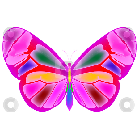 Butterfly 4 stock vector clipart, Butterfly cartoon drawing, vector art illustration by Laschon Robert Paul
