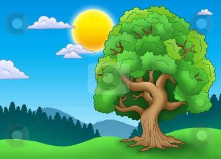 Green leafy tree in landscape stock photo, Green leafy tree in landscape - color illustration. by Klara Viskova
