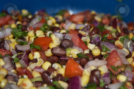 Fresh made salsa stock photo, Freshly made salsa in big blue bowl by Todd Thatcher