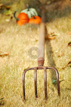 Autumn stock photo, Autumn still life with pitchfork and pumpkins by HD Connelly