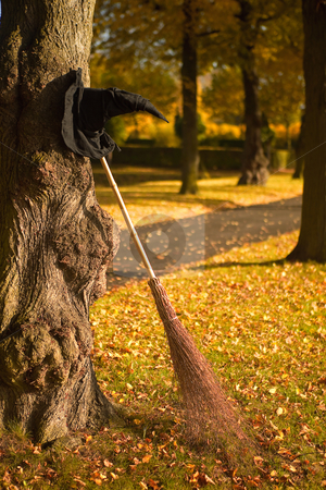 Witch hat and broom in the fall stock photo, Halloween witch hat and broom against a tree by Anneke