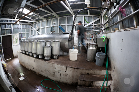 Rustic dairy operation in Costa Rica stock photo, Rustic dairy operation in Costa Rica near Monteverde by Scott Griessel