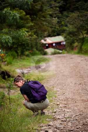 Hiker along side a rugged road in Costa Rica stock photo, Female hiker on a rugged trail in Costa Rica by Scott Griessel
