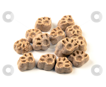 Puppy Snacks stock photo, A small pile of dog treats in the form of paws, shot on a white background. by Richard Nelson
