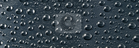 Black drops. stock photo, Water drops on black background. by Oleksiy Fedorov