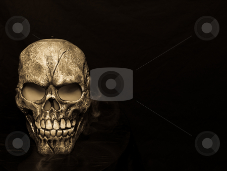 Skull stock photo, Spooky steaming skull in sepia.  Happy Halloween! by Cora Reed
