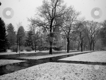 Snow Scene stock photo, City streets while snowing in black and white by Cora Reed