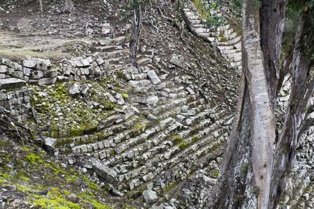 Stairs in ancient Copan stock photo, Ruins of ancient Copan - Honduras by Henryk Sadura
