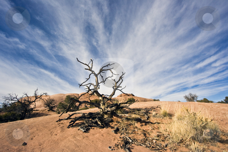 Clouds seen in Canyonlands National Park stock photo, Clouds seen in Canyonlands National Park, Utah. by Henryk Sadura