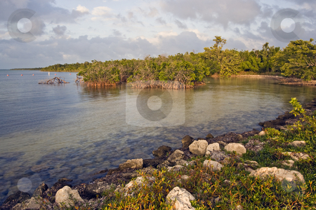 Biscayne National Park stock photo, Biscayne National Park during sunset by Henryk Sadura