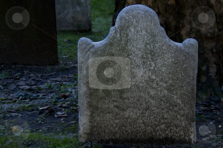 Blank Gravestone in Cemetery Shadows stock photo, Blank gravestone in cemetery shadows with dead leaves strewn on worn grass and edges of other gravestones visible; copy space available on blank tombstone; by Florence McGinn