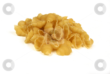 Pasta shells on a white background stock photo, Uncoocked pasta shells also know as conchiglie, on a white background by Mornay Van Vuuren