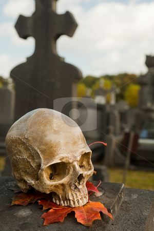 All Saint's skull on a grave stock photo, All Saint's scene with a halloween skull in an autumn graveyard by Anneke