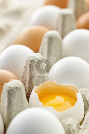 Eggs in box stock photo, White and brown eggs in carton with broken egg by Elena Elisseeva