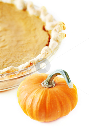 Pumpkin pie stock photo, Pumpkin pie and pumpkins isolated on white background by HD Connelly
