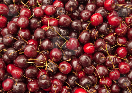 Lots of cherries. stock photo, Lots of cherries. by Stephen Rees