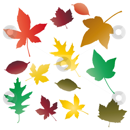 Autumnal leaves stock photo, Autumnal concept background, vector leaves. by Homydesign