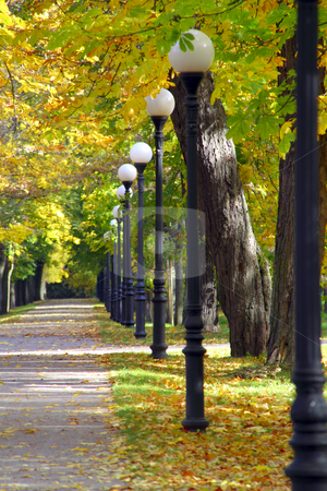 Autumn alley stock photo, Sunny day in park during fall, alley with metal post lamps by Vadim Pats