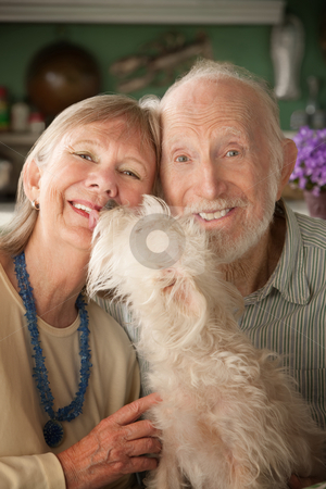 Senior Couple With Dog stock photo, Senior couple with cute white dog by Scott Griessel