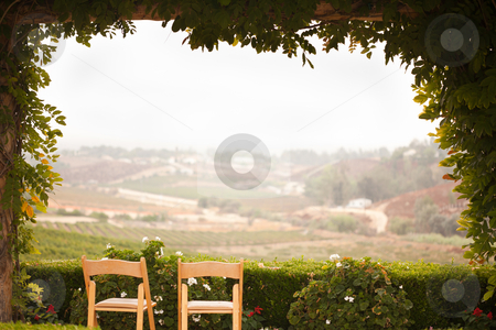 Vine Covered Patio and Chairs Overlooking the Country stock photo, Vine Covered Patio and Chairs with Beautiful Country View. by Andy Dean