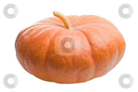 Pumpkin isolated stock photo, Pumpkin isolated on white background by Alex Varlakov
