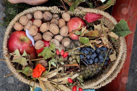 Autumn Harvest stock photo, Thanksgiving day in Croatia 2010. by Zvonimir Atletic