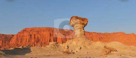 Sandstone formations in Ischigualasto, Argentina.