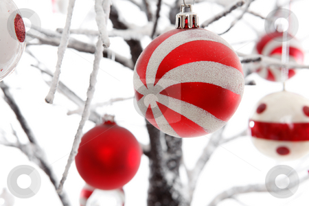 Christmas decorations stock photo, Christmas decorations hanging from a tree. by Leah-Anne Thompson