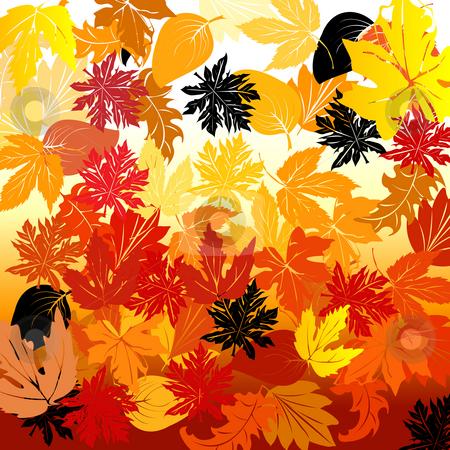 Autumn stock photo, Autumn background by Richard Laschon