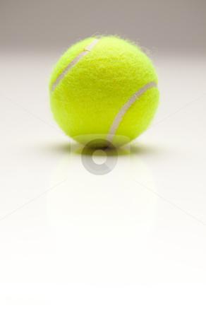 Single Tennis Ball on Gradation with Slight Reflection stock photo, Single Tennis Ball with Slight Reflection on a Gradated Background. by Andy Dean