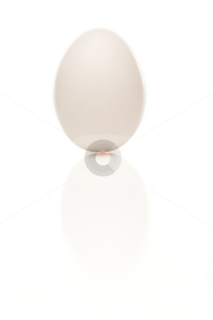 Standing Egg on a White Background stock photo, Standing White Egg Isolated on a White Background. by Andy Dean