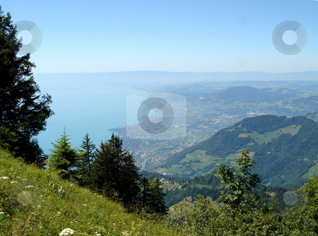 View of Montreux from the mountain stock photo, View of Montreux, Switzerland, and the lake of Geneva from the Alps mountain with its fir trees by beautiful weather by Elenarts