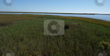 Ocea marsh stock photo, View of a marsh along the North Carolina Shore by Tim Markley