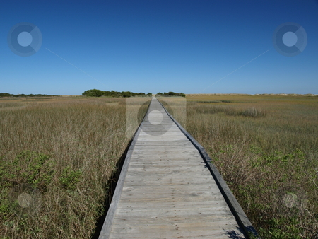 Path across the marsh stock photo, View of a marsh along the North Carolina Shore with a bridge over the wet land by Tim Markley