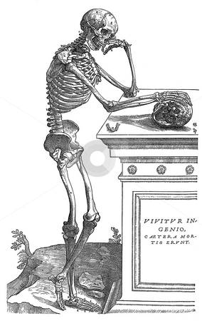 Skeleton with skull on tomb stock photo, Illustration of thoughtful human skeleton leaning on tomb with skull, white background. Engraving sourced from book by Andreas Vesalius,