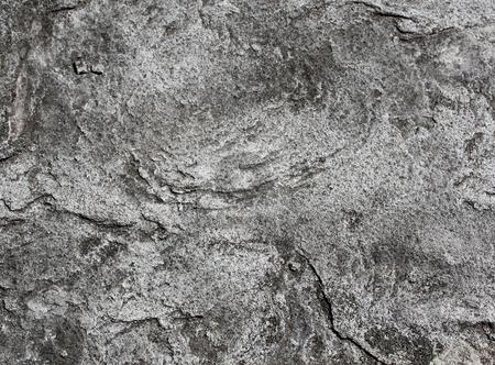 Gray textured rock background stock photo, Textured background of gray or grey rock or stone. by Martin Crowdy