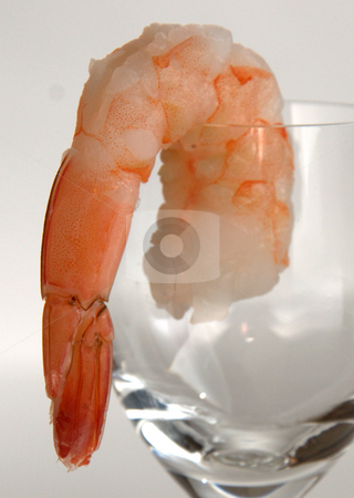 Shrimp Cocktail stock photo,  by Richard Sheehan