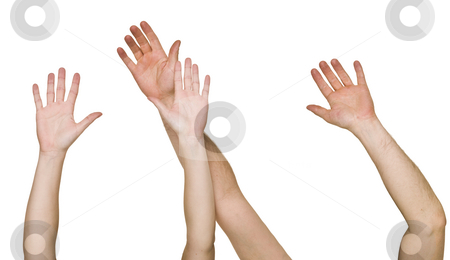 Raised Hands stock photo, Raised Hands isolated on white Background by Anne-Louise Quarfoth