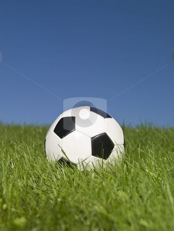 Black and white football in green grass. stock photo, Black and white football in green grass. by Anne-Louise Quarfoth
