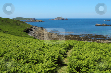 Path through fern in St. Martin's, Isles of Scilly. stock photo, Path through fern in St. Martin's, Isles of Scilly. by Stephen Rees