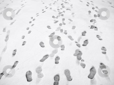 Lots of footprints in snow. stock photo, Lots of footprints in snow. by Stephen Rees