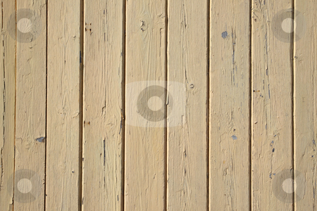 Old beige painted wooden fence close up. stock photo, Old beige painted wooden fence close up. by Stephen Rees