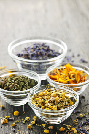 Dried medicinal herbs stock photo, Assortment of dry medicinal herbs in glass bowls by Elena Elisseeva
