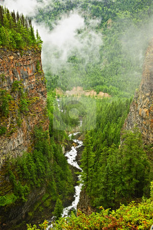 Canyon of Spahats Creek in Wells Gray Provincial Park, Canada stock photo, Canyon of Spahats Creek in Wells Gray Provincial Park, British Columbia, Canada by Elena Elisseeva