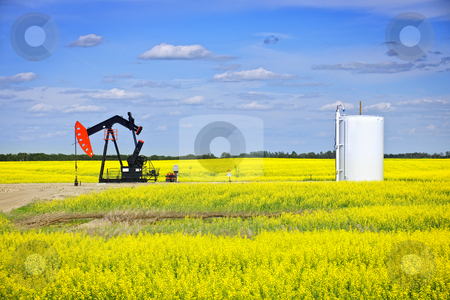 Nodding oil pump in prairies stock photo, Oil pumpjack or nodding horse pumping unit in Saskatchewan prairies, Canada by Elena Elisseeva