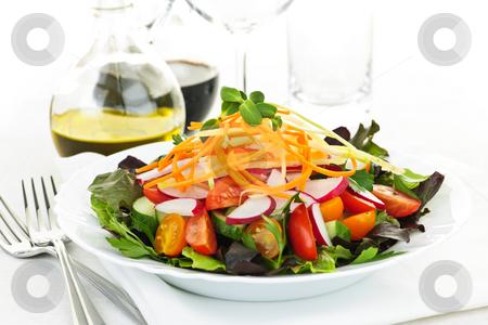 Garden salad stock photo, Plate of healthy green garden salad with fresh vegetables by Elena Elisseeva