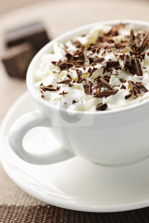 Hot chocolate stock photo, Cup of hot cocoa with shaved chocolate and whipped cream by Elena Elisseeva